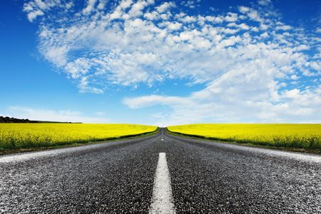 Road travelling through a Canola Field photo