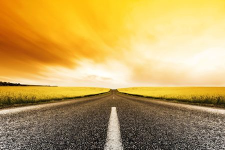 Road travelling through a Canola Field at Sunset photo