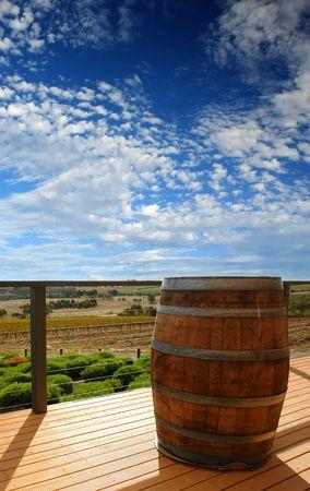 vale: Widok z lądowania w winnicy w McLaren Vale, Australia Południowa