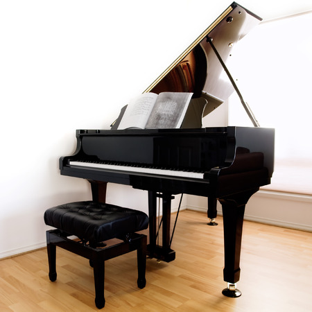 floorboards: Grand Piano y en las heces moderna floorboards