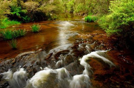nsw: A scenic creek in NSW