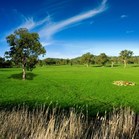 Rural landscape in the Adelaide Hills Stock Photo - 3421546