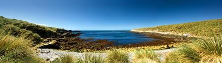 falkland: Panoramic Image on Kidney Island, Falkland Islands Stock Photo