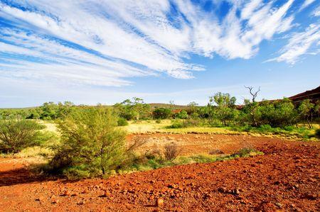 オーストラリアのアウトバックの風景