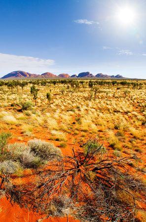 olgas: The Olgas in Central Australia