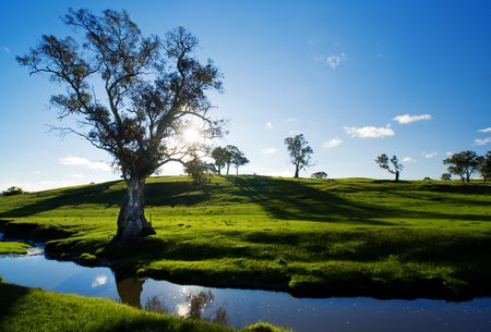 A rural Adelaide Hills landscape Stock Photo - 5949857