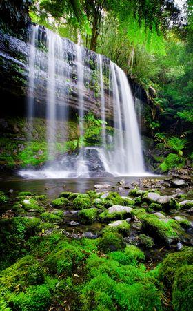Waterfall in a beautiful rainforest photo