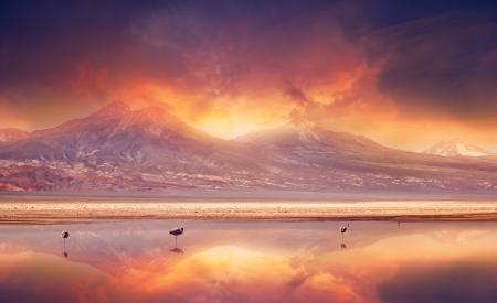 atacama: Vivid sunset over the Andes Mountains and Atacama Desert, Chile.