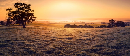 Sunrise in the Clare Valley Stock Photo