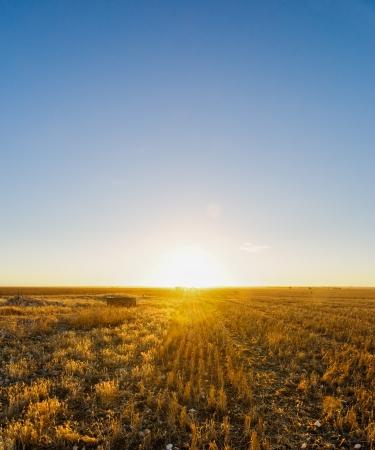 yorke: Sun Setting over Australian farmland