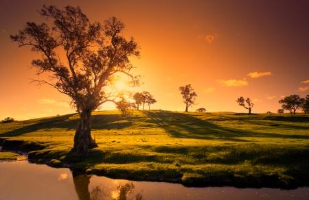 농촌 애들레이드 힐의 풍경