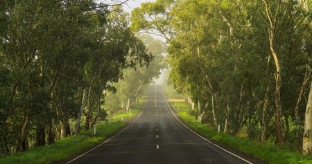 australia farm: Road in the Adelaide Hills, South Australia Stock Photo