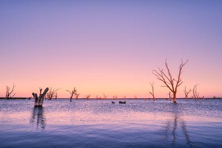 lake sunset: Peaceful Lake Sunset