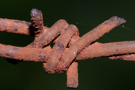 barbed wire and fence: Barbed Wire Barb on Fence rusted Stock Photo