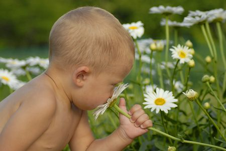 Boy smelling a flower