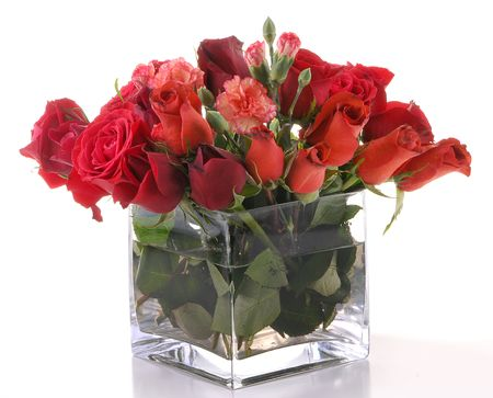 roses in vase: Flowers in a glass square vase over white background.
