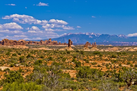 Arches Rock Formations with La Sal Mountains in the Background photo