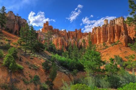 hoodoos: Hoodoos on Mossy Creek Trail in Bryce Canyon