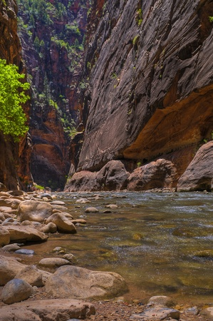 River Narrows Trail in Zion National Park Stock Photo - 10470394