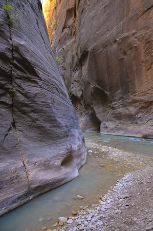 narrows: River Narrows Trail in Zion National Park Stock Photo