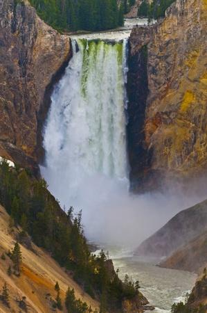 Lower Yellowstone Falls, Yellowstone National Park Stock Photo