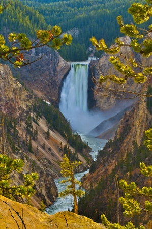 Lower Yellowstone Falls, Yellowstone National Park photo