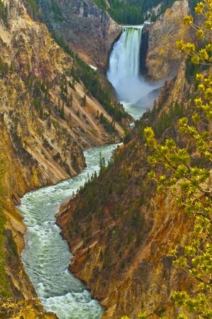 lower yellowstone falls: Lower Yellowstone Falls, Yellowstone National Park Stock Photo