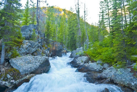 Waterfall on Cascade Creek in Grand Teton National  Stock Photo - 12827233