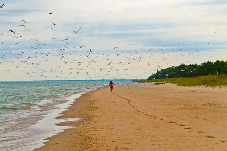 Girl Running on the Beach leaving footprints behind with seagulls flying off the shore. Stock Photo - 12827514