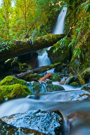 sol duc river: Spectacular Long Exposure Shot of a Waterfall in Olympic national Park surrounded by green rainforest foliage and giant boulder coverd in moss Stock Photo