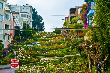 Lombard Street - the crookedest street in the world Stock Photo - 13797870