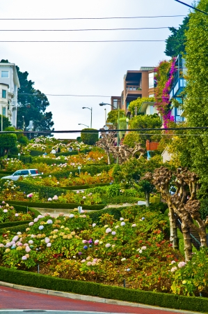 Lombard Street - the crookedest street in the world photo
