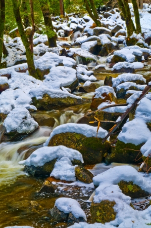 pine creek: Snow covered boulders, green pine trees and cold creek of Yosemite National Park Stock Photo