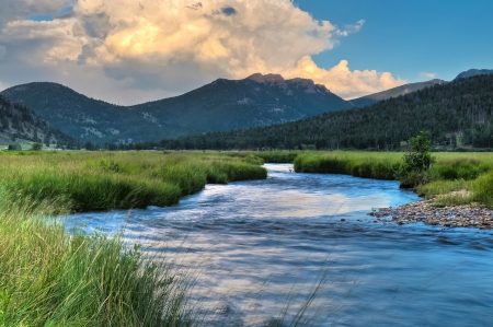 Creek in de buurt Cub Lake Trail, Rocky Mountain National Park Stockfoto