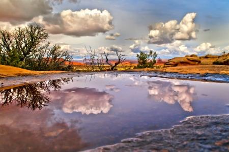 pothole: Sunset sky reflection in the pothole in Canyonlands Utah