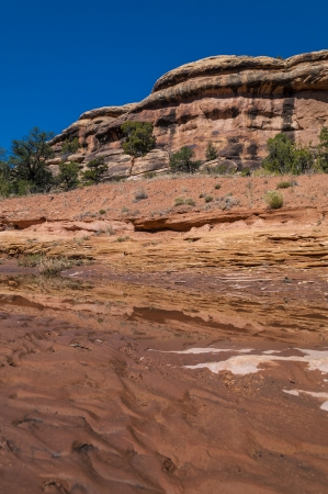 canyonland: Dry river bank on the beginning of a squaw flat trail