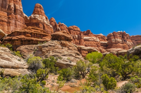 canyonland: View of the Needles from the small ridge Stock Photo
