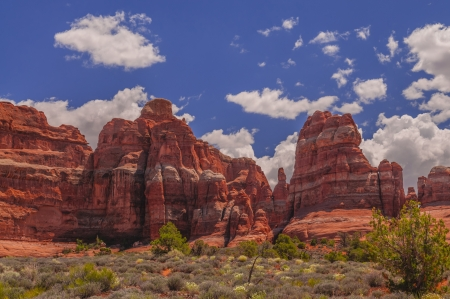 canyonland: View of the Needles from the elephant hill trail Stock Photo