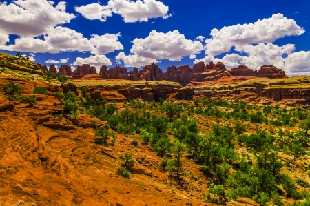 canyonland: Vibrant view of the Needles against cloudy blue sky