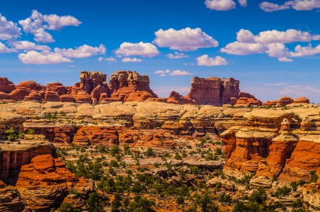 Needles District as viewed from the Squaw Flat trail towards Elephant Hill