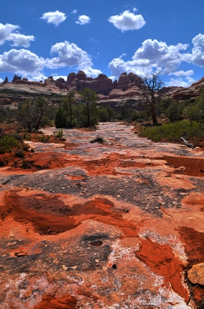 canyonland: Blue cloudy sky over Elephant Hill Trail