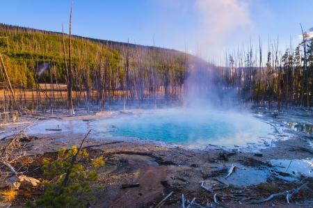 cisterna: Hermosa primavera Cisterna at Sunset - Parque Nacional de Yellowstone
