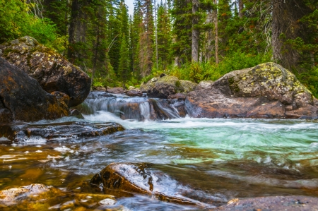 np: Crystal clear water in Cascade Creek in Cascade Canyon - Grant Teton NP