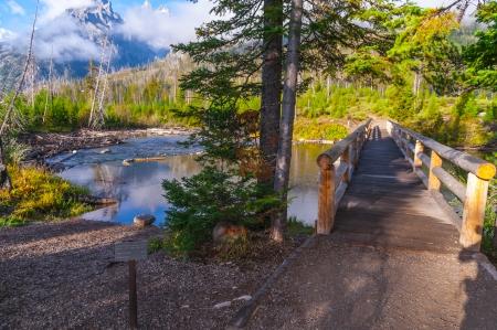 jenny: Footbridge between String Lake and Jenny Lake - Grand Tetons