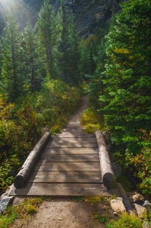 footbridge: Footbridge on a Paintbrush Canyon Trail Grand Tetons Stock Photo