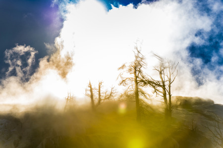 Beautiful Winter Geyser at Sunset - Yellowstone National Park  photo