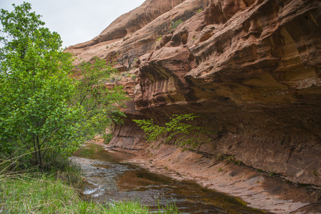 Creek along the Negro Bill Canyon trail leading towards morning glory bridge photo