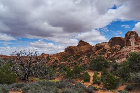 the devils garden: Devils Garden Primitive Loop Trail - Arches National Park Moab Utah Stock Photo
