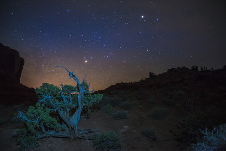 star path: Desert Landscape at night with beautiful starry sky