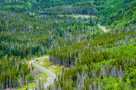 Winding Road through the Rocky Mountain National Park photo